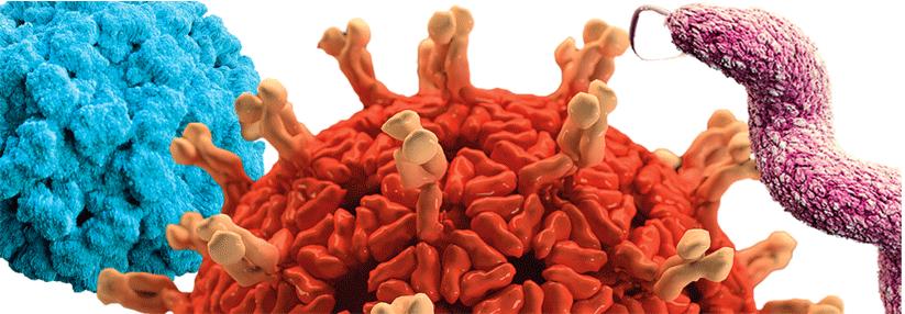 Alarmstufe Kot: Antibiotikaeinsatz nötig? - Medical Tribune